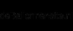 Logo of DeBallonnensite.nl