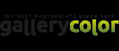 Gallerycolor.nl's logo
