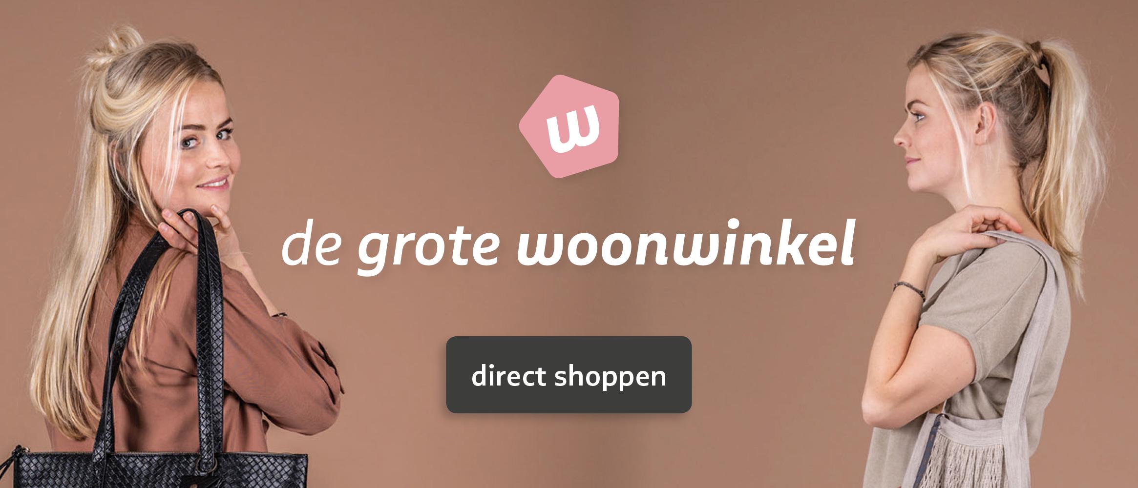 Logo of Degrotewoonwinkel.nl