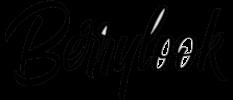 Logo of Berrylook.com